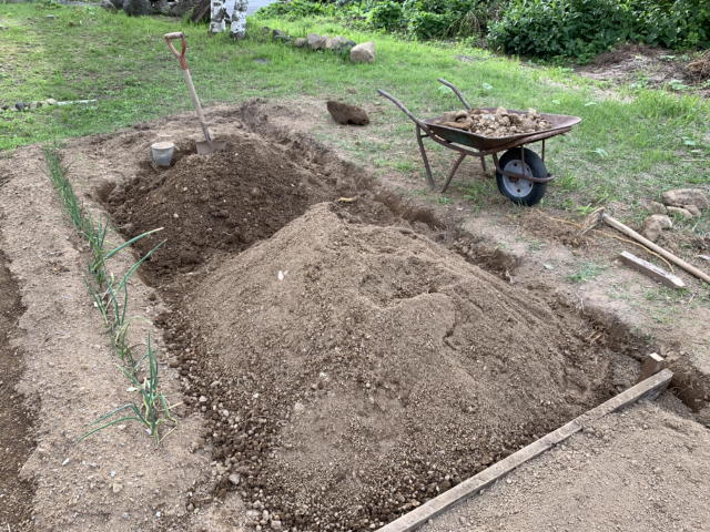 家庭菜園の土作り 小石の除去